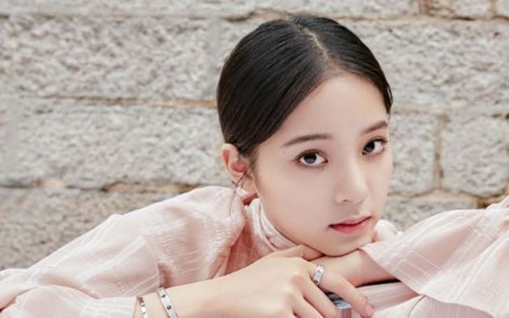 Ouyang Nana net worth