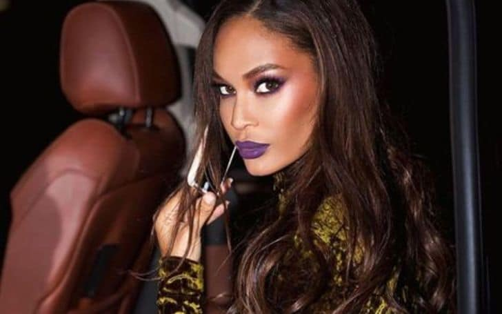Joan Smalls net worth